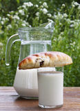 Fresh milk with appetizing pies Stock Photography
