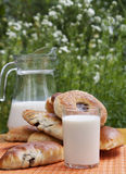 Fresh milk with appetizing ruddy pies Royalty Free Stock Image