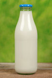 Fresh milk in a bottle Stock Photography