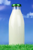 Fresh milk in a bottle on green meadow Stock Photos