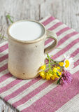 Fresh milk in ceramic mug and flowers Royalty Free Stock Images
