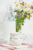 Fresh milk in ceramic mug Royalty Free Stock Photo
