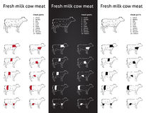 Fresh milk cow meat parts Icons for packaging and info-graphic 1 Stock Images