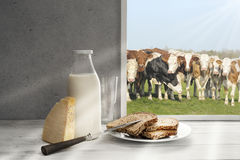 Fresh milk,cream bottle on window sill in countryside Royalty Free Stock Photography