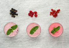 Fresh milk, currant, raspberry and red currant Royalty Free Stock Image