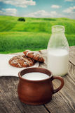 Fresh milk Royalty Free Stock Images