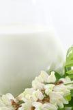 Fresh milk in a glass jug Royalty Free Stock Photos