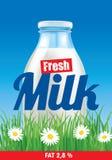 Fresh milk on grass field with flowers. Milk on grass field with flowers Stock Photography