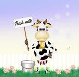 Fresh milk Royalty Free Stock Photography