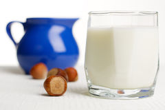 Fresh milk and nuts Stock Photography