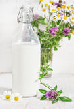 Fresh milk in old fashioned bottle and wildflowers Stock Image