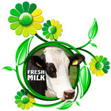 Fresh Milk - Symbol with Cow and Flowers Royalty Free Stock Images