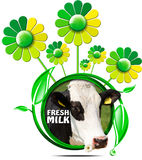 Fresh Milk - Symbol with Cow and Flowers Stock Photography