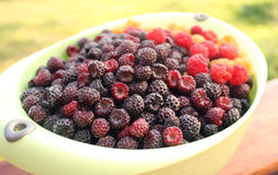 Fresh milty-colored raspberry in a cup. On the veranda of village house Stock Image