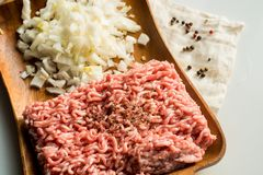 Fresh minced meat with onions. Meat minced on a wooden tray. spices, salt and onions Royalty Free Stock Photos