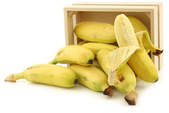 Fresh mini bananas and a peeled one  in a wooden box Stock Photo
