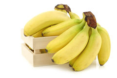 Fresh mini bananas and a peeled one  in a wooden box Royalty Free Stock Photography