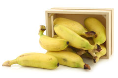 Fresh mini bananas and a peeled one  in a wooden box Stock Photos