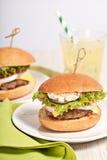 Fresh mini burger served meal Stock Image