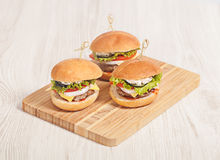 Fresh mini burger served meal Stock Image