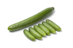 Fresh mini cucumbers. Compared with a large one on white background Stock Image