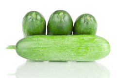 Fresh mini cucumbers. Fresh cucumbers on a white reflective background Royalty Free Stock Photos