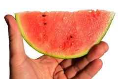 Fresh mini watermelon Citrullus Lanatus var. Lanatus slice held in left hand on white background Stock Images