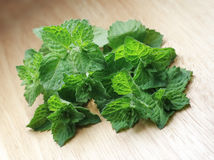 Fresh mint. Fresh spearmint on wooden board. Mentha piperita Stock Photos