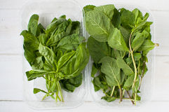 Fresh mint and basil. On white wooden table Royalty Free Stock Images
