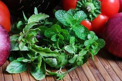Fresh mint. Beautiful shot of fresh mint leaves Stock Image