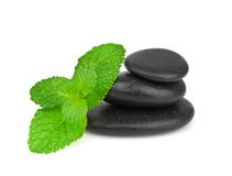 Fresh mint on the black stones with drops Royalty Free Stock Photo