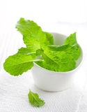 Fresh mint in bowl Royalty Free Stock Images