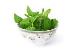 Fresh Mint in Bowl Stock Photo
