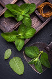 Fresh mint in the box and vintage chopper knife. Stock Images
