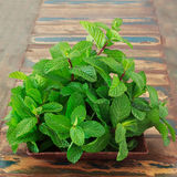 Fresh mint in brown bowl on wooden table Stock Photos