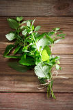 Fresh Mint Bunch on a Rustic Table Stock Images
