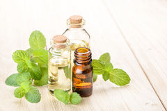 Fresh mint essential oil Stock Image