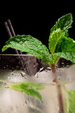 Fresh mint garnish. Mojito on a bar top with ice and fresh mint garnish close up Royalty Free Stock Photography