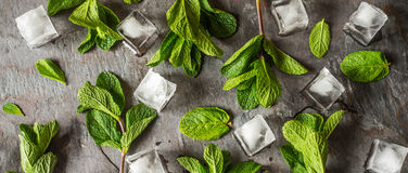 Fresh mint with ice cube on the stone table wide screen Royalty Free Stock Photo