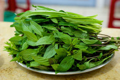 Fresh mint ingredients. And other green for Pho soup in Vietnam Stock Image