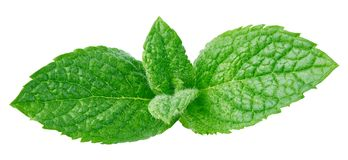 Fresh mint isolated Clipping Path stock image