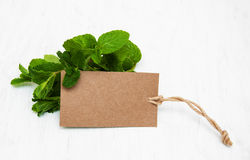Fresh mint with label. On a old white wooden background Stock Photo