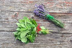 Fresh mint and lavender medical herbs bunch. On old wooden background Stock Photo