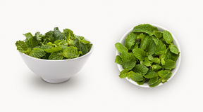 Fresh mint leaf  in a bowl Stock Photos