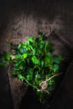 Fresh mint leaves bunch herb on wooden  table. Top view with cop Royalty Free Stock Images