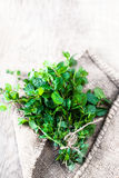 Fresh mint leaves bunch herb on wooden  table. Top view with cop Stock Photos