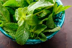 Fresh mint leaves in the ceramic bowl stock photography