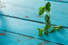 Fresh mint leaves in jar Royalty Free Stock Photos