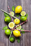 Fresh mint leaves with lime and lemon for preparing mojito Royalty Free Stock Images