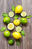 Fresh mint leaves with lime and lemon for preparing mojito Stock Photo